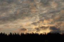 Dangus (2)