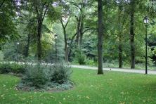 Žaliuojantis Bernardinų sodas