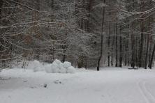 Daug sniego