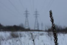 Žiemos simetrija (7)